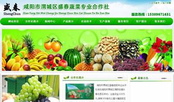 咸阳市渭城区盛春蔬菜专业合作社