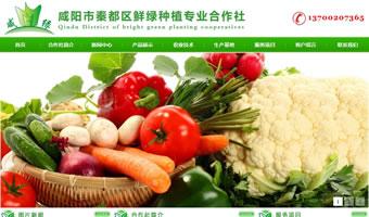 咸阳市秦都区鲜绿种植专业合作社