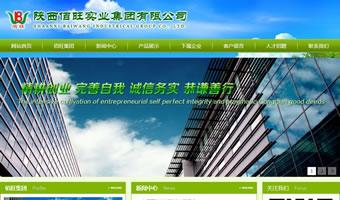 陕西佰旺实业集团有限公司