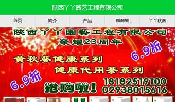 陕西丫丫花艺工程有限公司