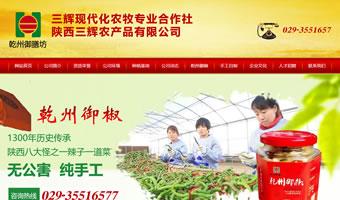 陕西三辉农产品有限责任公司